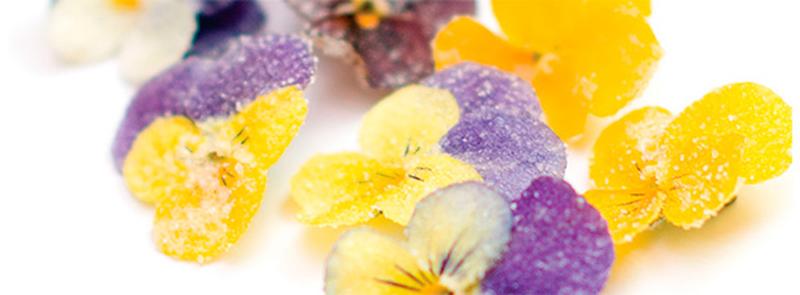 Flores cristalizadas para cocinar