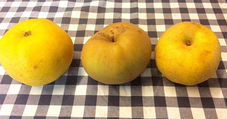 Las mejores manzanas reineta