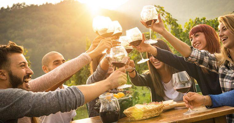 Catas de verano: quesos, vinos y ginebra